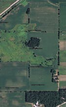 Satellite View of Farm