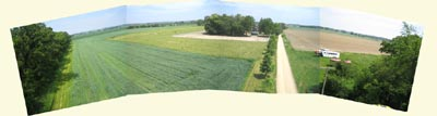 Panarama of Farm